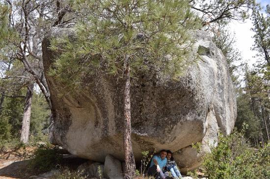 Idyllwild, Californien: Hillside trail - Relax under the rock!