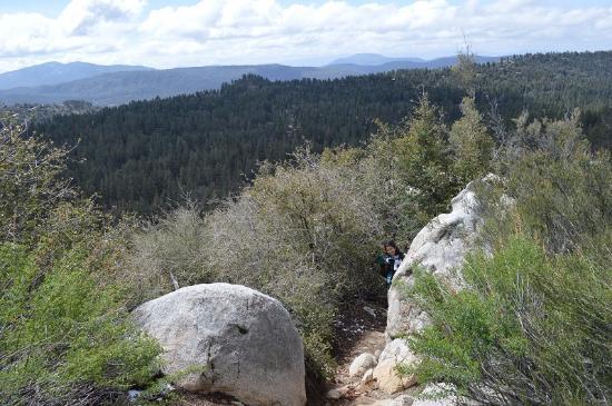 Idyllwild, Калифорния: Summit loop trail - a scenic view