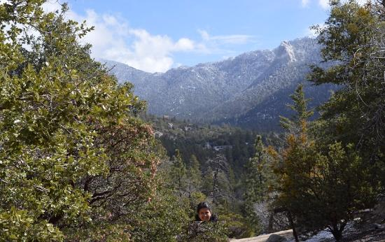 Idyllwild Nature Center: View point - very short walk with visual treat!