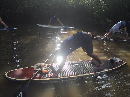 Blue Spirit: Excursion by resort...paddle board on Nosara River