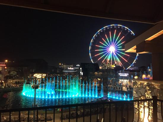 views from the rooftop pool picture of margaritaville island hotel rh tripadvisor co za