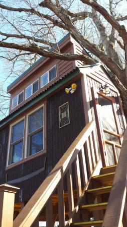 Elizabethtown, IL: View of White Oak treehouse from the lower of the two decks.