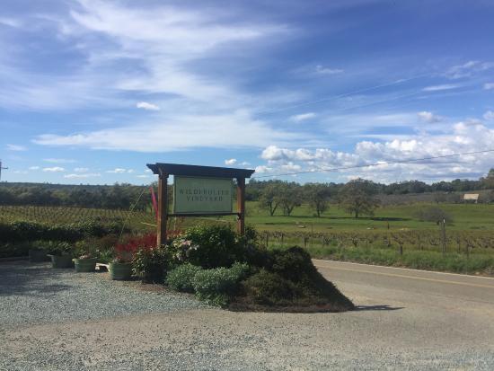 Wilderotter Winery: photo1.jpg