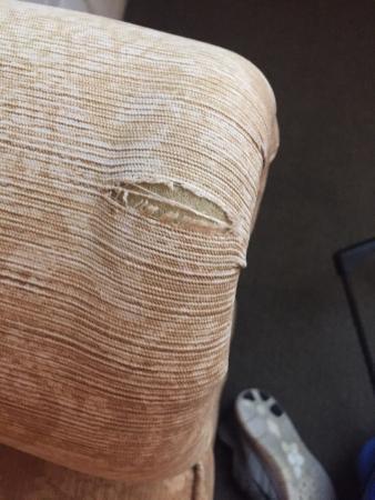 Roanoke, WV: Old, ripped sofa sleeper