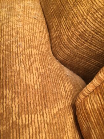 Roanoke, WV: Extremely dusty couch- No wonder my child is having an allergy issue at this hotel