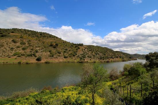 Beja District, البرتغال: Vista do Restaurante para o Rio Guadiana