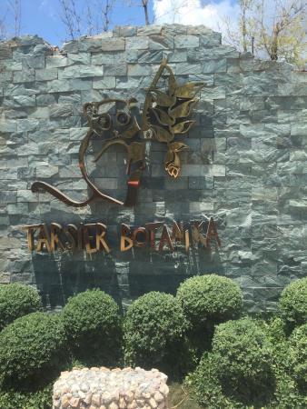 Tarsier Botanika: photo8.jpg