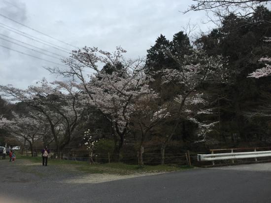 Iwayado Park : photo0.jpg