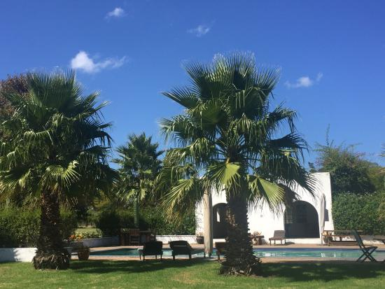 Bella Manga Country House: The grounds
