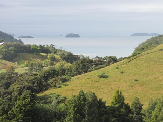 Matakana Castle Photo