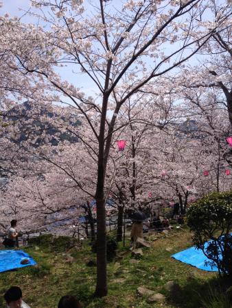 Tateyama Park