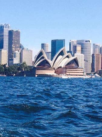 Фотография Sydney Charter Boat Hire