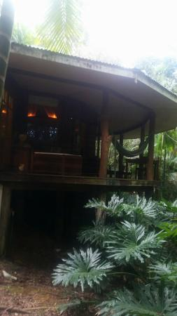 Amazing Wollumbin Palms Retreat at Mt Warning: Snapchat-6219430242145416794_large.jpg