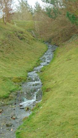 Abermule, UK: Stream along walk route