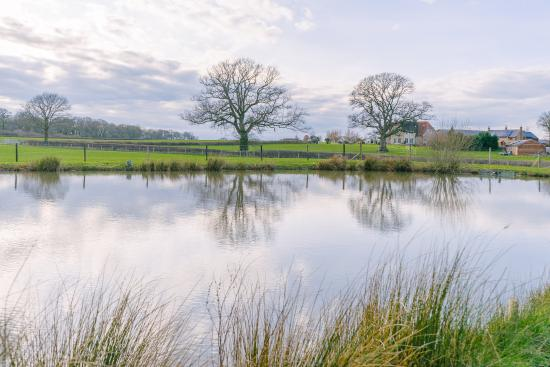 One of the coarse fishing lakes at The Victorian Barn, Woolland