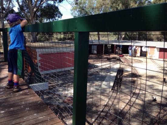Wilson, Австралия: Niana station