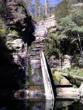 Snug Falls in early autumn