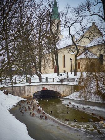 Kuldīgas Sv. Katrīnas Baznīca