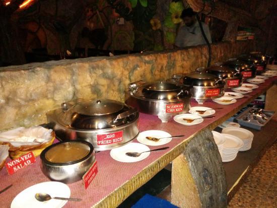 animal kingdom chennai adyar restaurant reviews phone number rh tripadvisor in