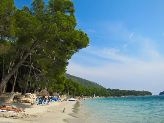 Пляж - Picture of Formentor Playa, Formentor - TripAdvisor
