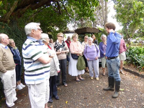 Quinta do Boa Vista : Patrick describing the gardens