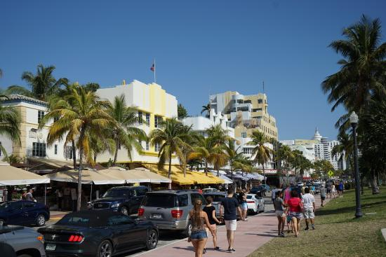 The Official Art Deco Walking Tour By Miami Design Preservation League Hotels
