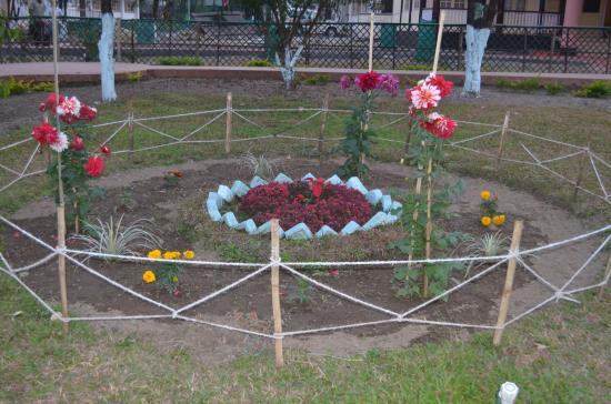 Bhalukpong, India: Garden