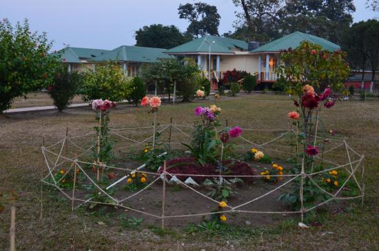 Bhalukpong, India: garden cottages