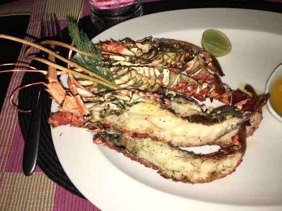 Grilled lobster!