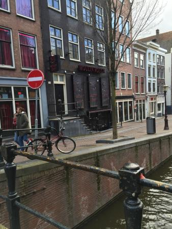 attraction review reviews light district amsterdam north holland province