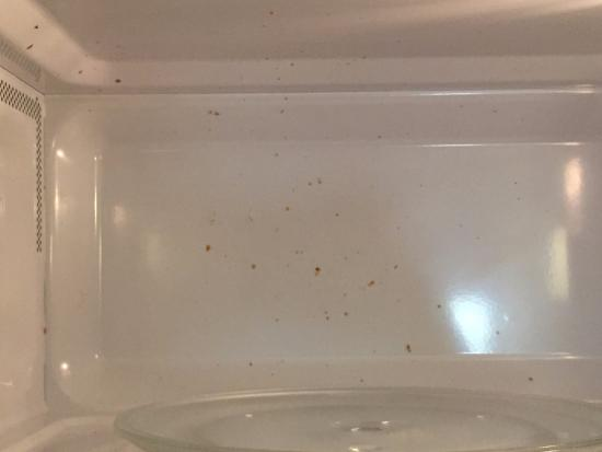 Extended Stay America - Washington, D.C. - Sterling - Dulles: The microwave when I arrived, not cleaned