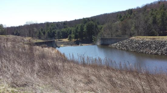 Troy, PA: View of Dam