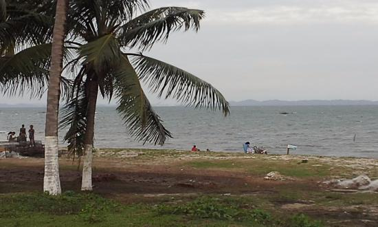 Santo Amaro, BA:  Praia  de Bom Jesus,Um paraíso bem pertinho de Salvador.