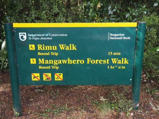 Rimu Walk