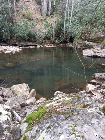 Daniels, Virginia Occidental: Glade Creek Fishing Spot 2