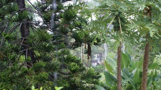 Selemadeg, Indonesia: Bienfaisante pluie...
