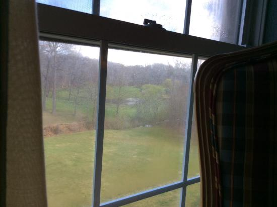 Pearl River, NY: View from our room :)