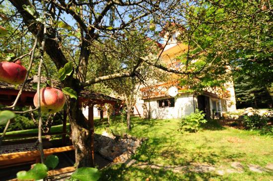 Sanok, Polonia: Dom Lwowski 2