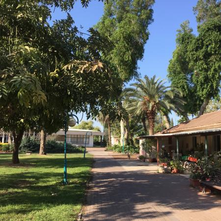 Shaar Hagolan Kibbutz Country Lodging