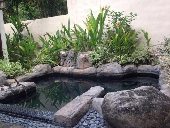 The Banjaran Hotsprings Retreat: photo0.jpg