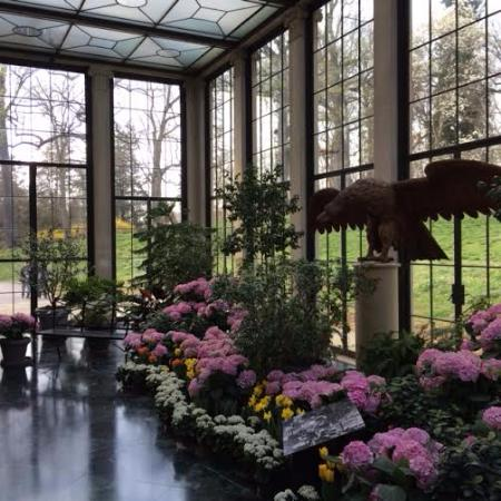 Winterthur Museum, Garden & Library: Conservatory.