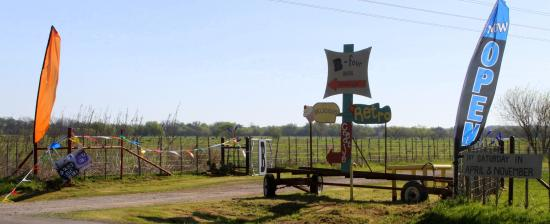 Mineral Wells, TX : drive in