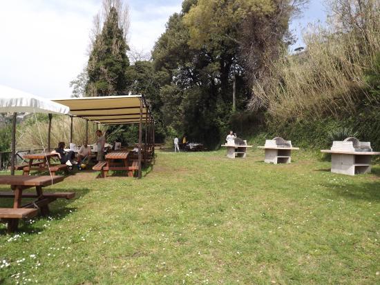 Gazebo foto di bordo lago area picnic castel gandolfo tripadvisor - Area tavoli picnic barbecue roma ...