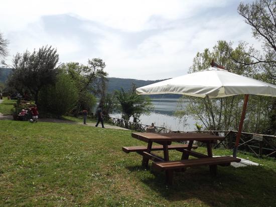 Panche foto di bordo lago area picnic castel gandolfo tripadvisor - Area tavoli picnic barbecue roma ...