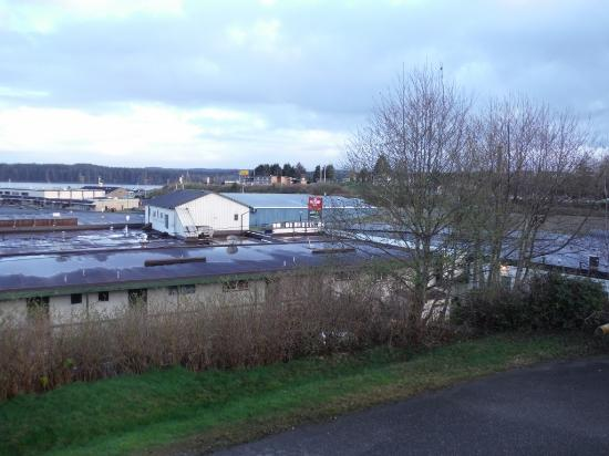 Haida Way Motor Inn: View from our Room