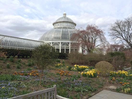 Enid a haupt conservatory picture of new york botanical - Bronx botanical garden free admission ...