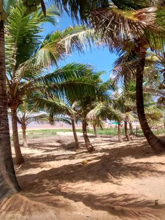 Pousada Luar Da Praia: Vista desde la reposera