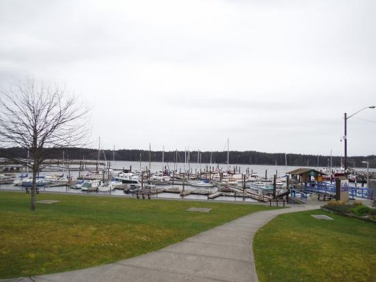 Port McNeill Harbour