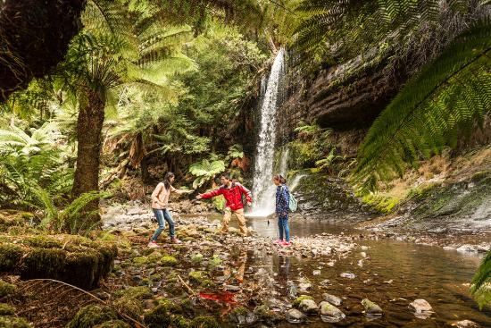 Tasmania, Australia: Russell Falls
