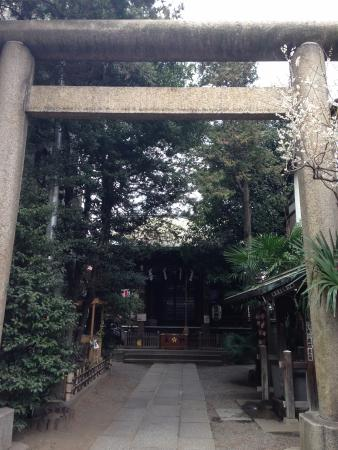 Sakuragi Shrine